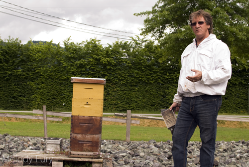 Chilliwack Honey Farmer by Melody Fury