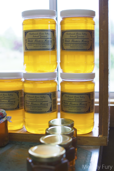 Chilliwack Honey Vintage Jars by Melody Fury