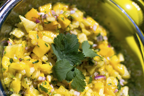 Pineapple Mango Salsa by Melody Fury