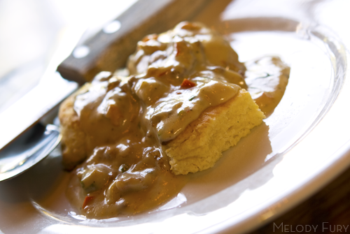 Gravy and biscuits at Tasty n Sons in Portland by Melody Gourmet Fury