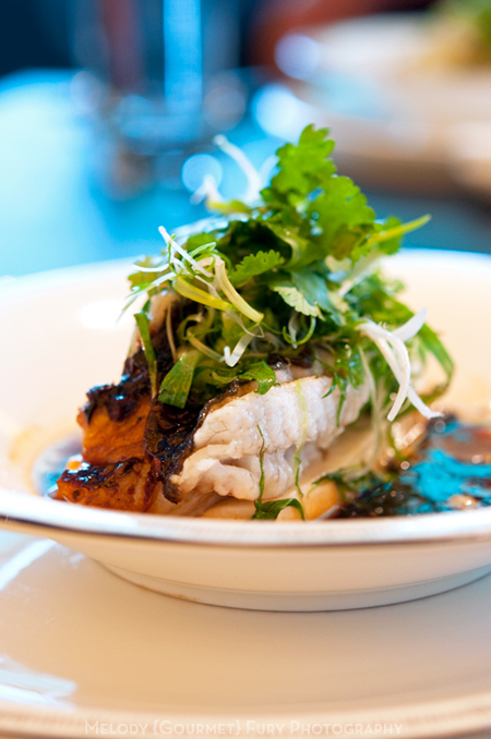 Steamed grouper on tofu with soy sauce and scallions at Sevva Restaurant in Hong Kong by Melody Fury Photography. Food, Drink, Restaurant Photographer and Writer in Vancouver BC and Austin TX