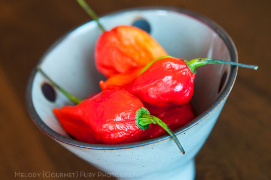 Ghost Chili Pepper Naga Jolokia by Melody Fury Photography. Food, Drink, Restaurant Photographer and Writer in Vancouver BC and Austin TX