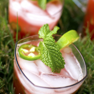 Watermelon Jalapeño Cocktail Cooler Recipe for Summer